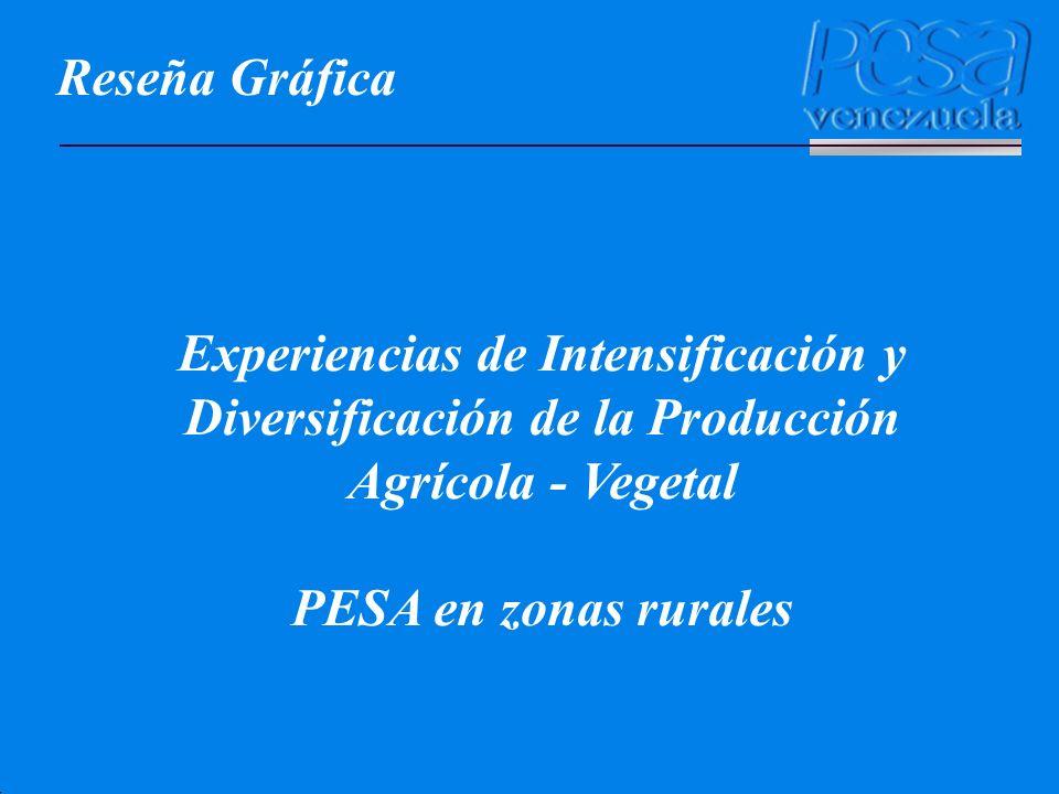 Reseña Gráfica Experiencias de Intensificación y Diversificación de la Producción Agrícola - Vegetal PESA en zonas rurales
