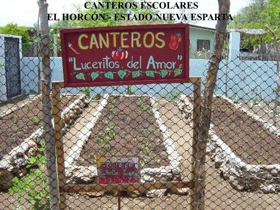 CANTEROS ESCOLARES EL HORCÓN - ESTADO NUEVA ESPARTA