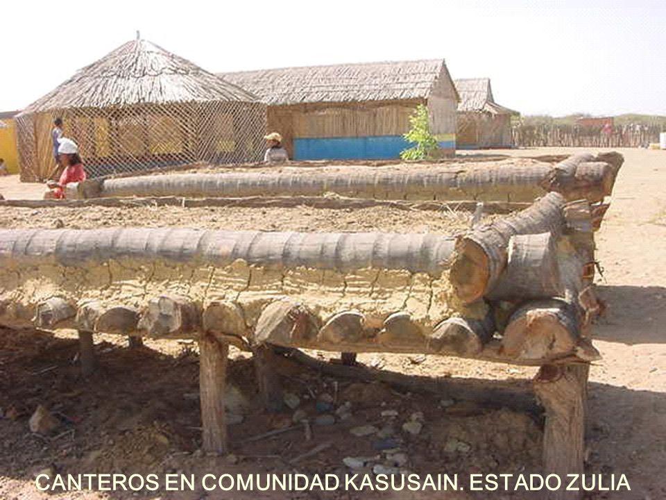 CANTEROS EN COMUNIDAD KASUSAIN. ESTADO ZULIA