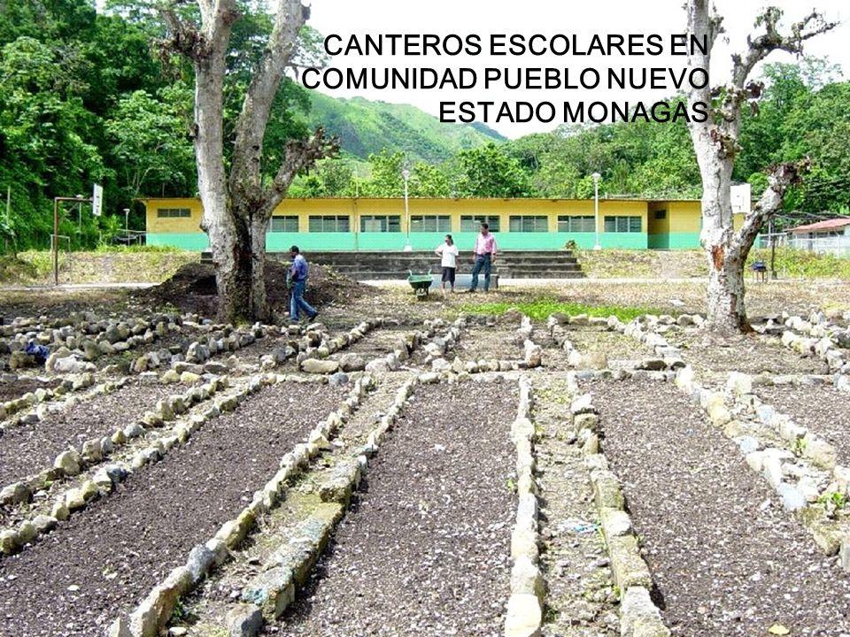 CANTEROS ESCOLARES EN COMUNIDAD PUEBLO NUEVO ESTADO MONAGAS