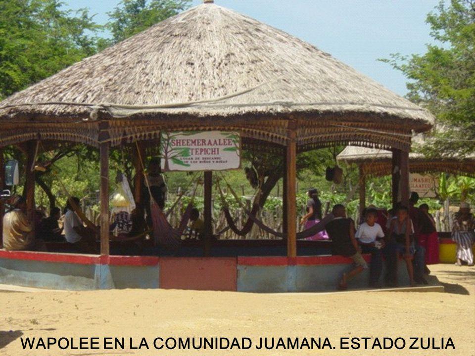 WAPOLEE EN LA COMUNIDAD JUAMANA. ESTADO ZULIA