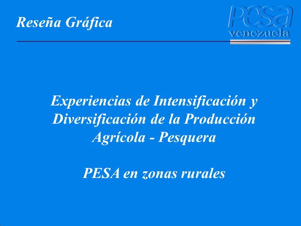 Reseña Gráfica Experiencias de Intensificación y Diversificación de la Producción Agrícola - Pesquera PESA en zonas rurales