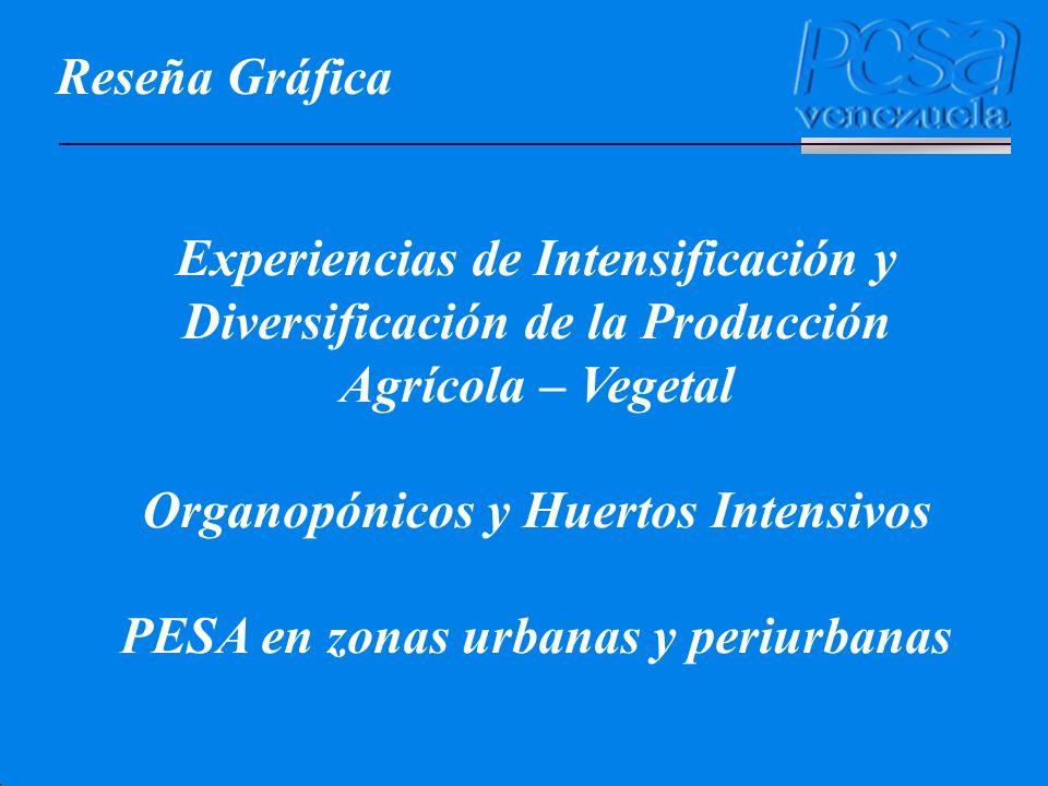 Reseña Gráfica Experiencias de Intensificación y Diversificación de la Producción Agrícola – Vegetal Organopónicos y Huertos Intensivos PESA en zonas