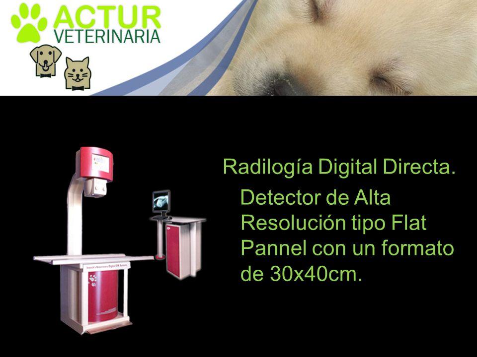 Radilogía Digital Directa. Detector de Alta Resolución tipo Flat Pannel con un formato de 30x40cm.