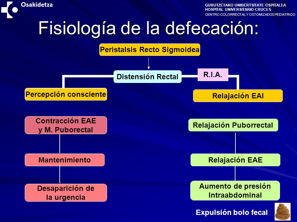 CENTRO COLORRECTAL Y OSTOMIZADOS PEDIATRICO GURUTZETAKO UNIBERTSITATE OSPITALEA HOSPITAL UNIVERSITARIO CRUCES 1-) Malformaciones Anorrectales Malformaciones Altas, Agenesia de Sacro … 2-) Alt.