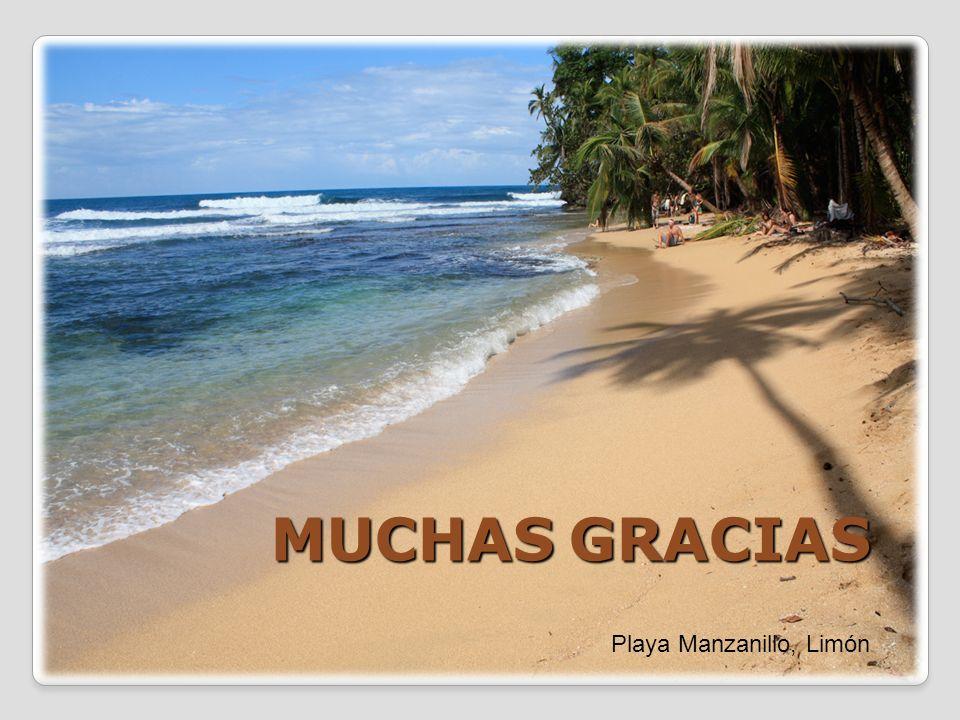 MUCHAS GRACIAS Playa Manzanillo, Limón