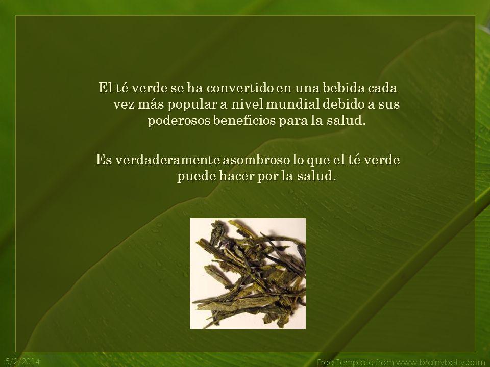 5/2/2014 Free Template from www.brainybetty.com El té verde se ha convertido en una bebida cada vez más popular a nivel mundial debido a sus poderosos beneficios para la salud.