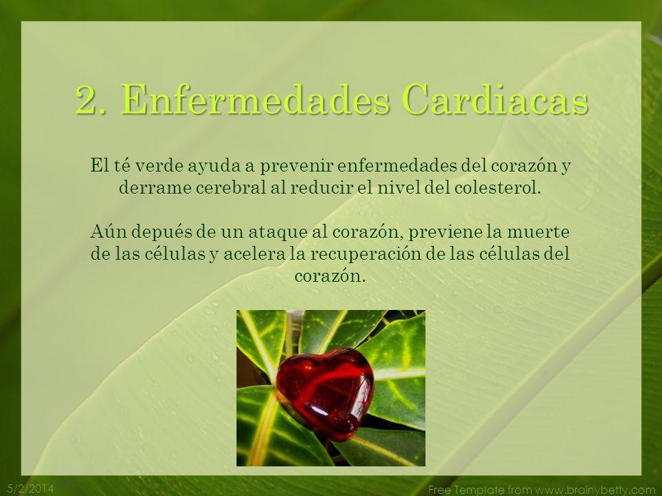 5/2/2014 Free Template from www.brainybetty.com El té verde ayuda a prevenir enfermedades del corazón y derrame cerebral al reducir el nivel del colesterol.