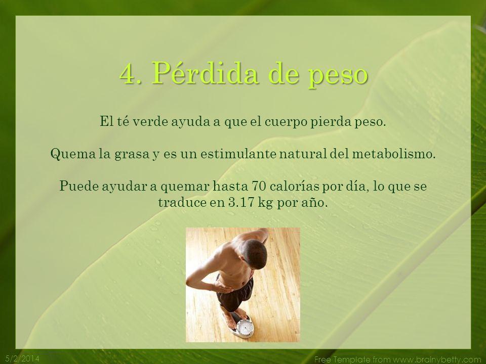 5/2/2014 Free Template from www.brainybetty.com El té verde contiene antioxidantes conocidos como polifenoles que atacan a los radicales libres. Lo qu