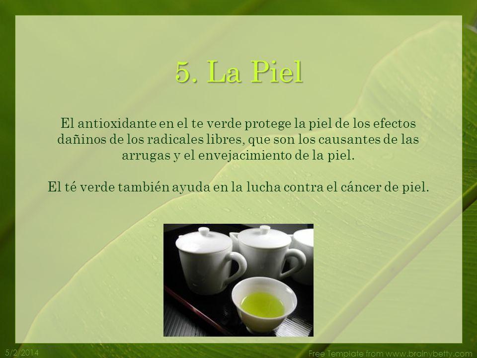 5/2/2014 Free Template from www.brainybetty.com 4. Pérdida de peso El té verde ayuda a que el cuerpo pierda peso. Quema la grasa y es un estimulante n