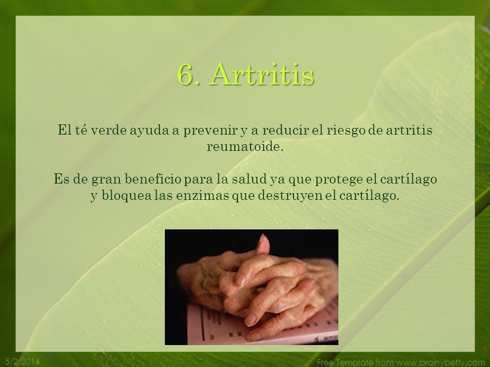5/2/2014 Free Template from www.brainybetty.com 5. La Piel El antioxidante en el te verde protege la piel de los efectos dañinos de los radicales libr