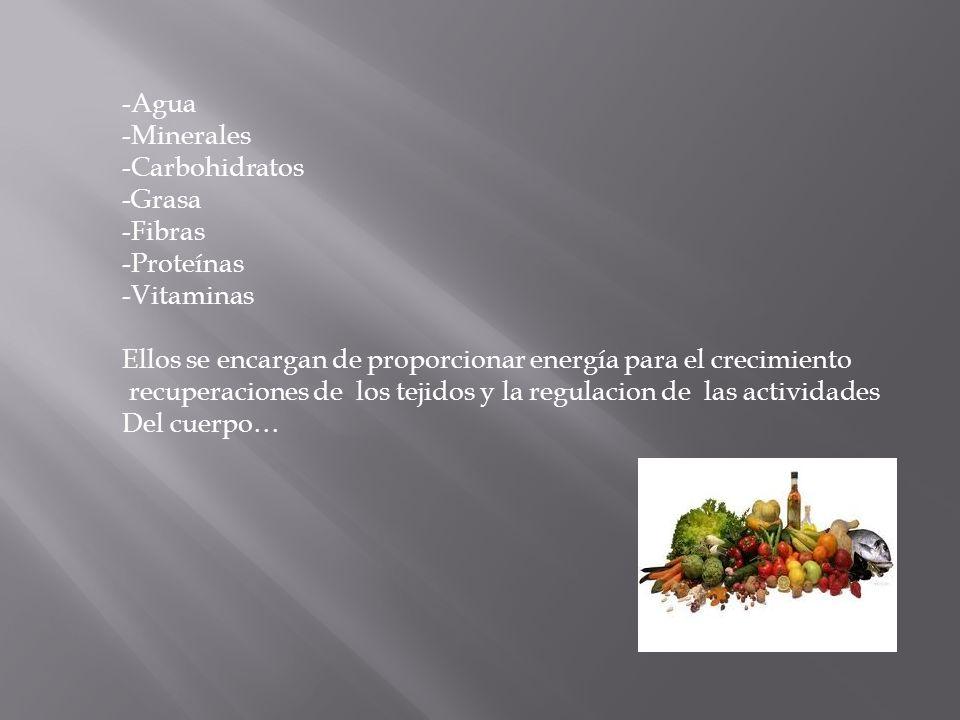 -Agua -Minerales -Carbohidratos -Grasa -Fibras -Proteínas -Vitaminas Ellos se encargan de proporcionar energía para el crecimiento recuperaciones de l