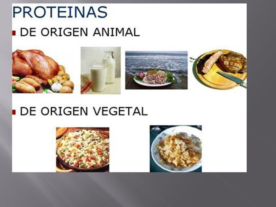 4.1.- LOS ALIMENTOS QUE NECESITAMOS: -Gran parte de nuestra salud depende de los alimentos que ingerimos, una dieta adecuada debe contener los nutrientes que el organismo requiere Para vivir equilibradamente