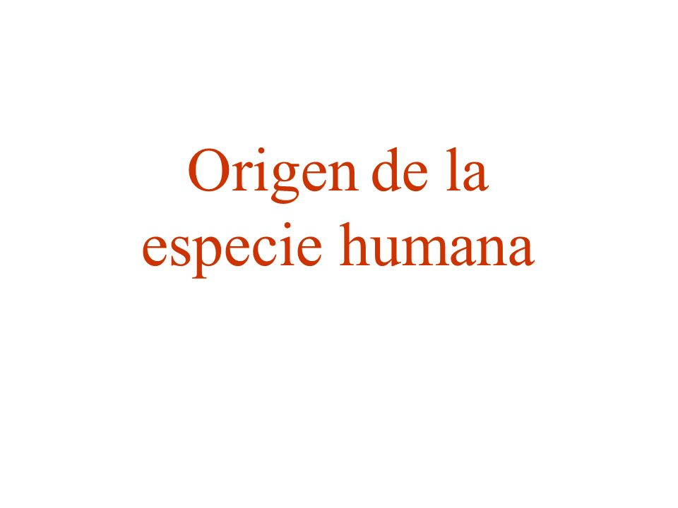 Primates.Características Se trata de un orden de mamíferos arborícolas.