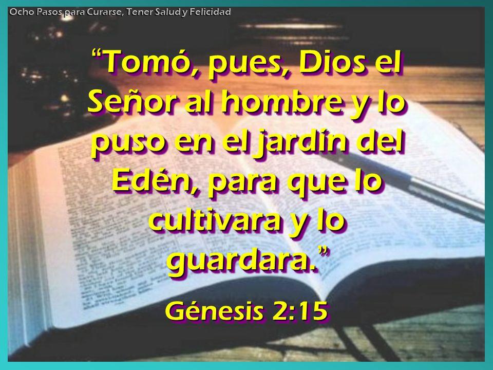 Tomó, pues, Dios el Señor al hombre y lo puso en el jardín del Edén, para que lo cultivara y lo guardara. Tomó, pues, Dios el Señor al hombre y lo pus