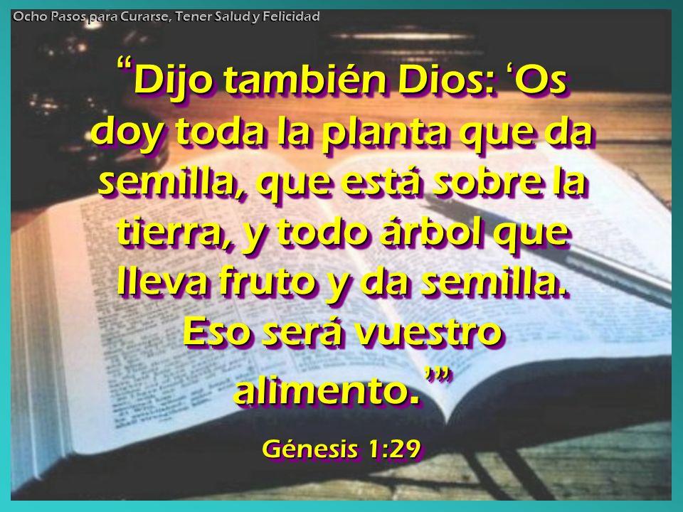 Dijo también Dios: Os doy toda la planta que da semilla, que está sobre la tierra, y todo árbol que lleva fruto y da semilla. Eso será vuestro aliment