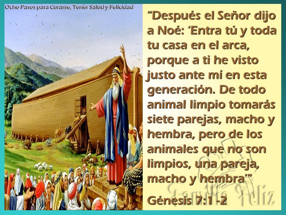 Después el Señor dijo a Noé: Entra tú y toda tu casa en el arca, porque a ti he visto justo ante mí en esta generación. De todo animal limpio tomarás