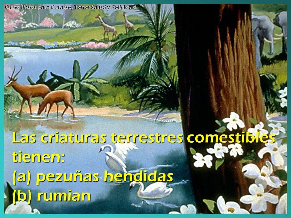 Las criaturas terrestres comestibles tienen: (a) pezuñas hendidas (b) rumian Ocho Pasos para Curarse, Tener Salud y Felicidad