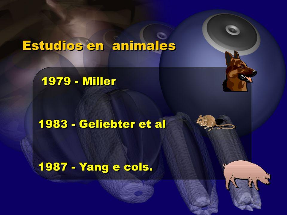 Estudios en animales 1979 - Miller 1983 - Geliebter et al 1987 - Yang e cols.