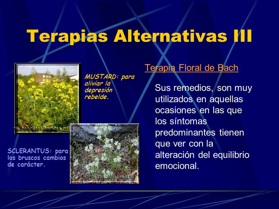 Terapias Alternativas II Técnicas de relajación, yoga, meditación,... Fitoterapia: Premenopausia salvia, verbena, manto de dama, etc. Menopausia hierb