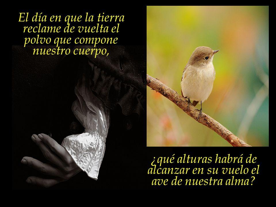 Nuestro cuerpo es apenas la jaula, mientras el espíritu es el pájaro... Nada tiene el pájaro que temer, sin embargo, con la destrucción de la jaula.