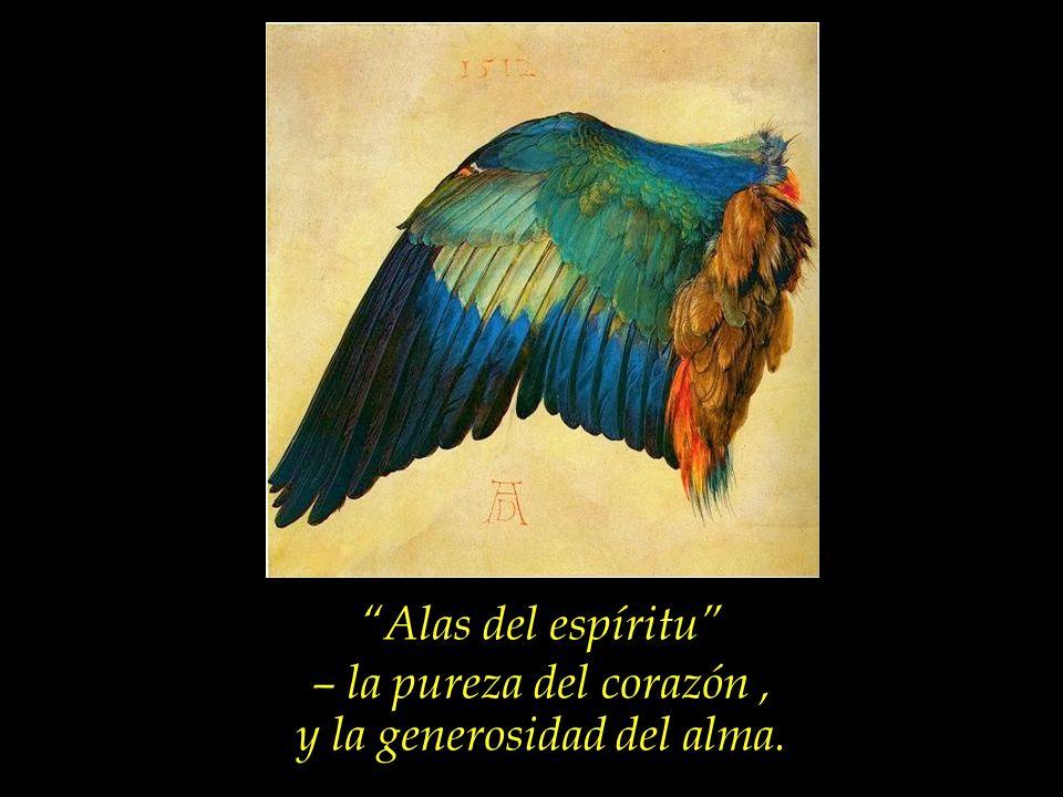 Aprovechemos los breves e inciertos días de nuestra jornada terrestre, para fortalecer las alas de nuestro espíritu.