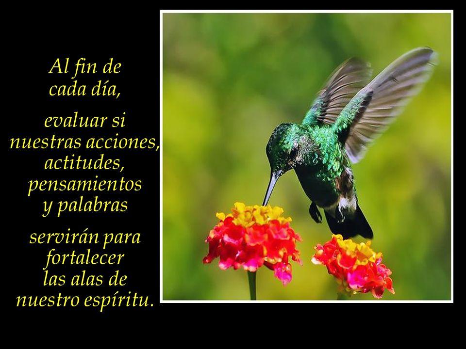 Una dieta espiritual balanceada, donde estén presentes en una justa medida la Caridad, la Compasión, la Justicia, el Amor y el Perdón.