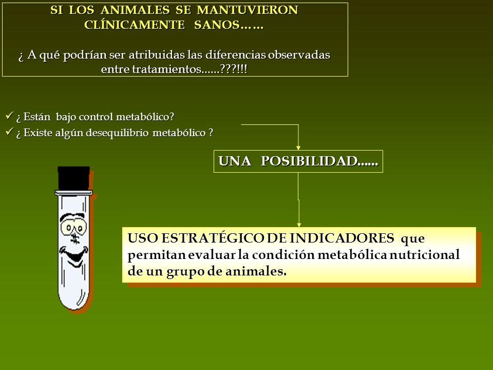 SI LOS ANIMALES SE MANTUVIERON CLÍNICAMENTE SANOS…… ¿ A qué podrían ser atribuidas las diferencias observadas entre tratamientos......???!!! ¿ Están b