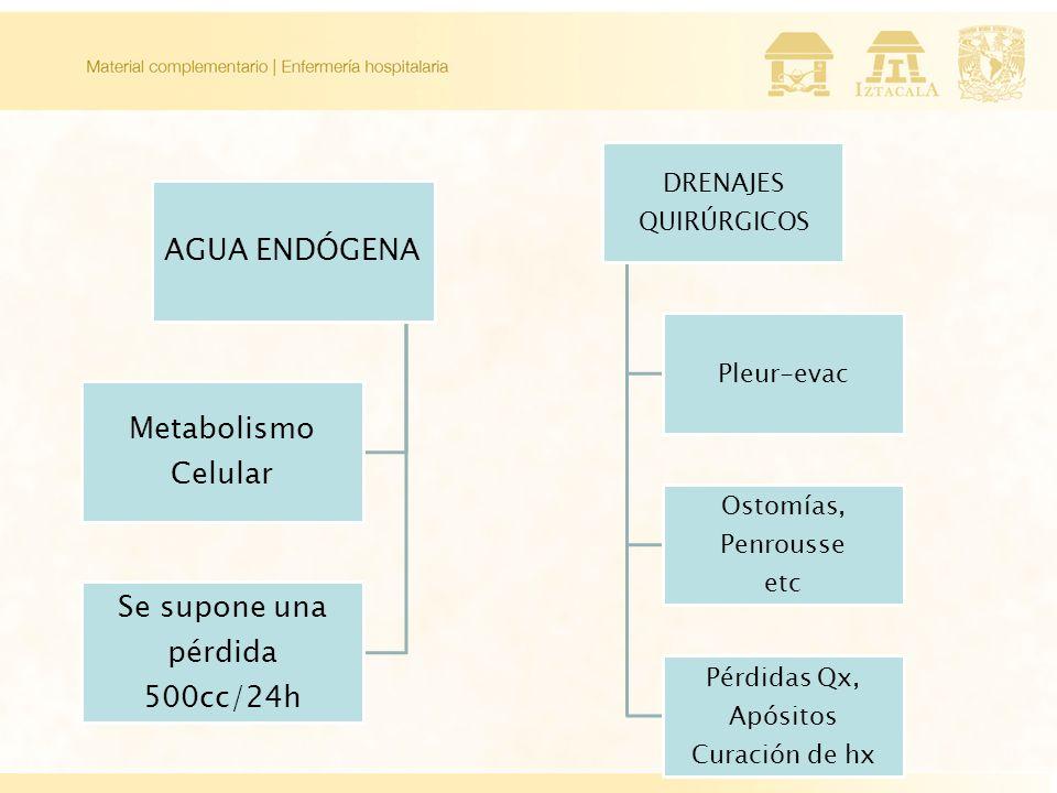 AGUA ENDÓGENA Metabolismo Celular Se supone una pérdida 500cc/24h DRENAJES QUIRÚRGICOS Pleur-evac Ostomías, Penrousse etc Pérdidas Qx, Apósitos Curación de hx