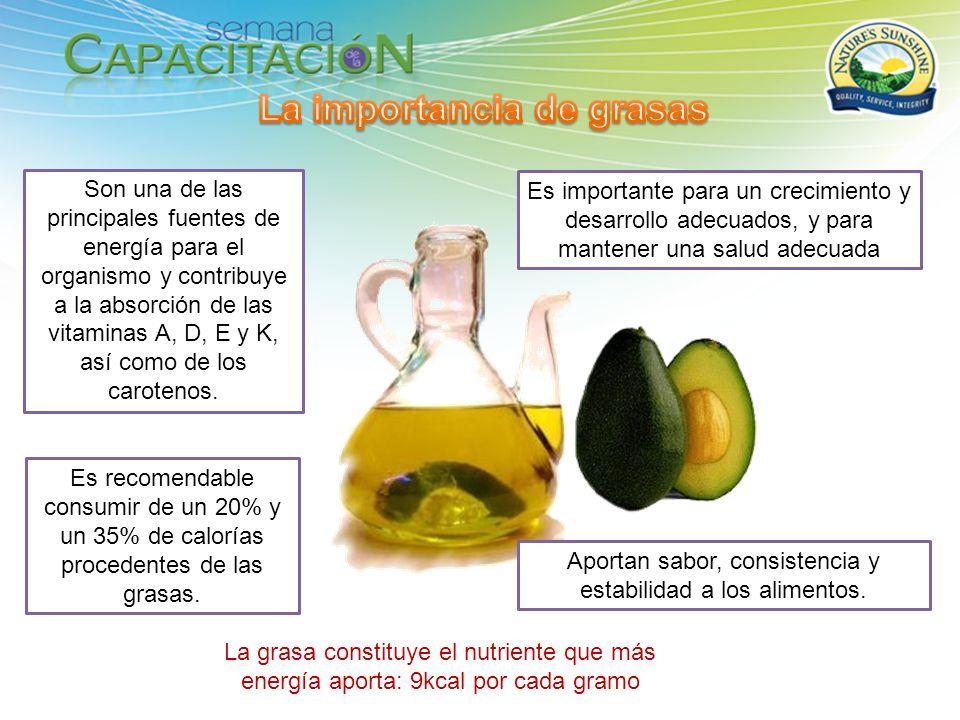 Aportan sabor, consistencia y estabilidad a los alimentos. Son una de las principales fuentes de energía para el organismo y contribuye a la absorción