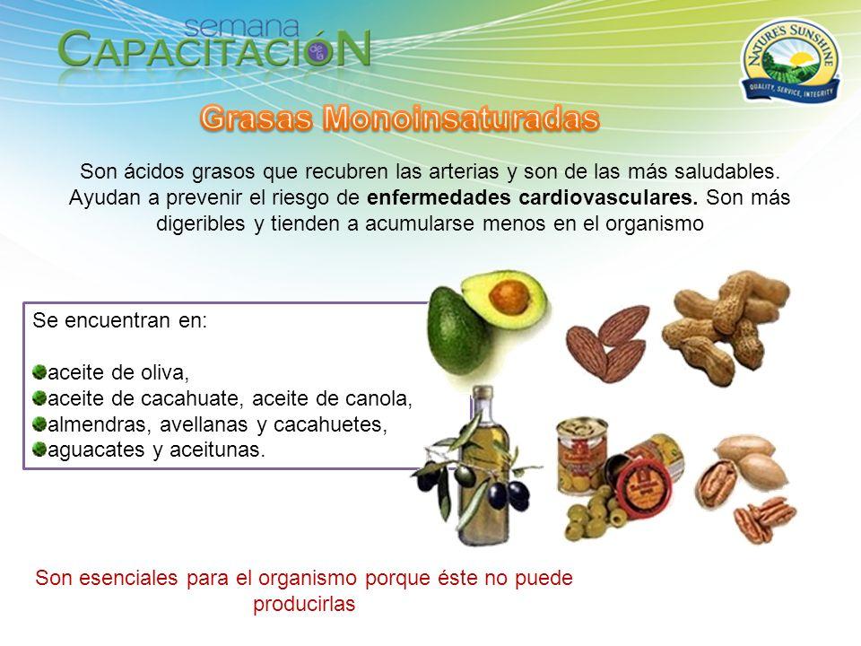 Se encuentran en: aceite de oliva, aceite de cacahuate, aceite de canola, almendras, avellanas y cacahuetes, aguacates y aceitunas. Son ácidos grasos
