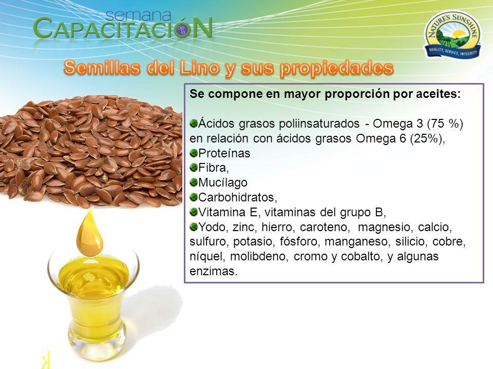 Se compone en mayor proporción por aceites: Ácidos grasos poliinsaturados - Omega 3 (75 %) en relación con ácidos grasos Omega 6 (25%), Proteínas Fibr