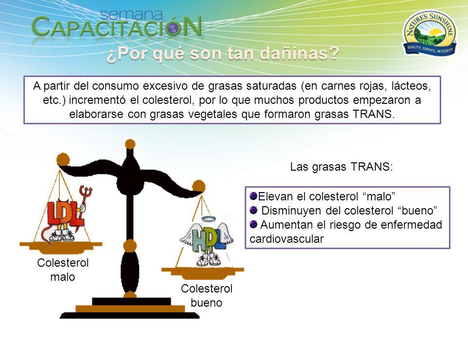 Ac.Grasos Proteínas TRANS Los Ac.