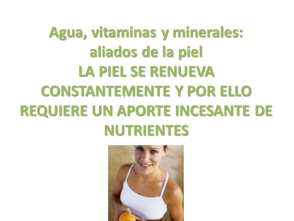 Ácidos grasos esenciales ALIMENTOS GRASOS Suministran nutrientes imprescindibles para mantener una piel bien estructurada y tersa.