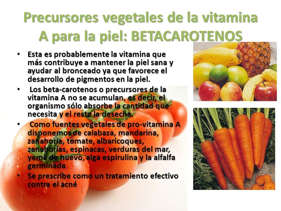 Precursores vegetales de la vitamina A para la piel: BETACAROTENOS Esta es probablemente la vitamina que más contribuye a mantener la piel sana y ayud