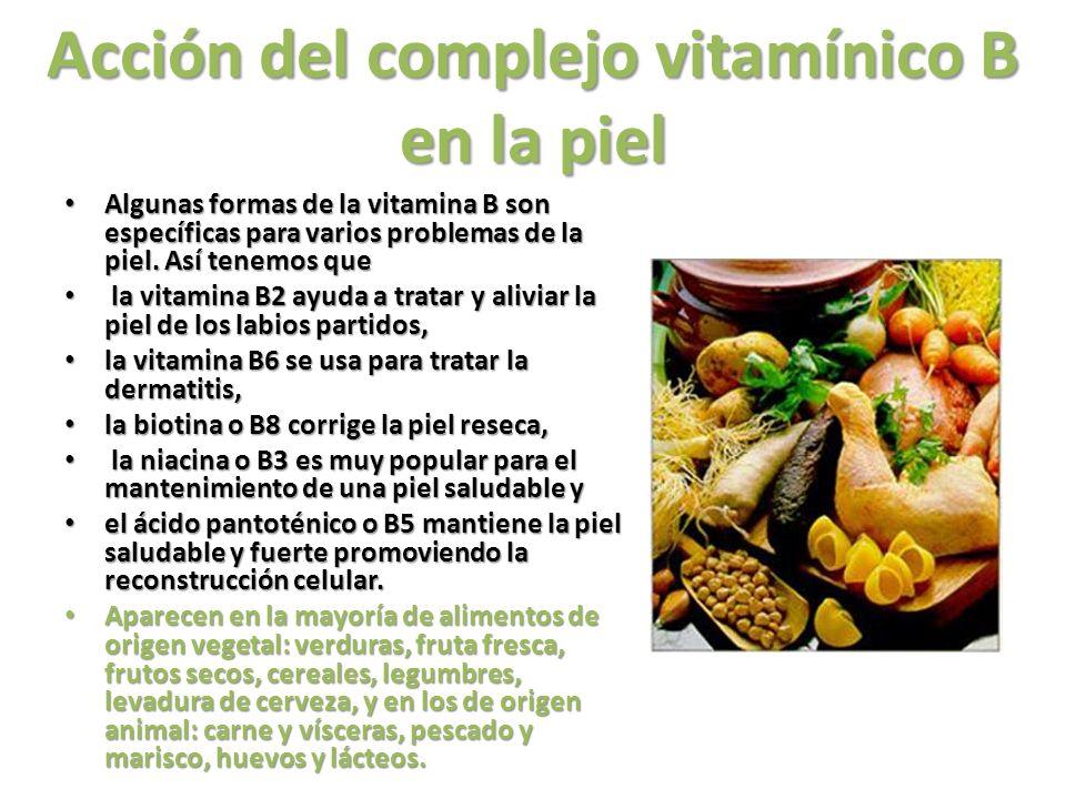 Acción del complejo vitamínico B en la piel Algunas formas de la vitamina B son específicas para varios problemas de la piel. Así tenemos que Algunas