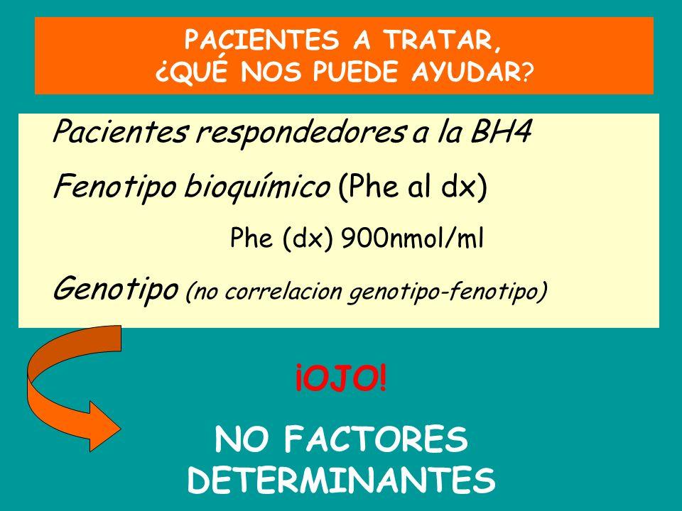 PACIENTES A TRATAR, ¿QUÉ NOS PUEDE AYUDAR? Pacientes respondedores a la BH4 Fenotipo bioquímico (Phe al dx) Phe (dx) 900nmol/ml Genotipo (no correlaci