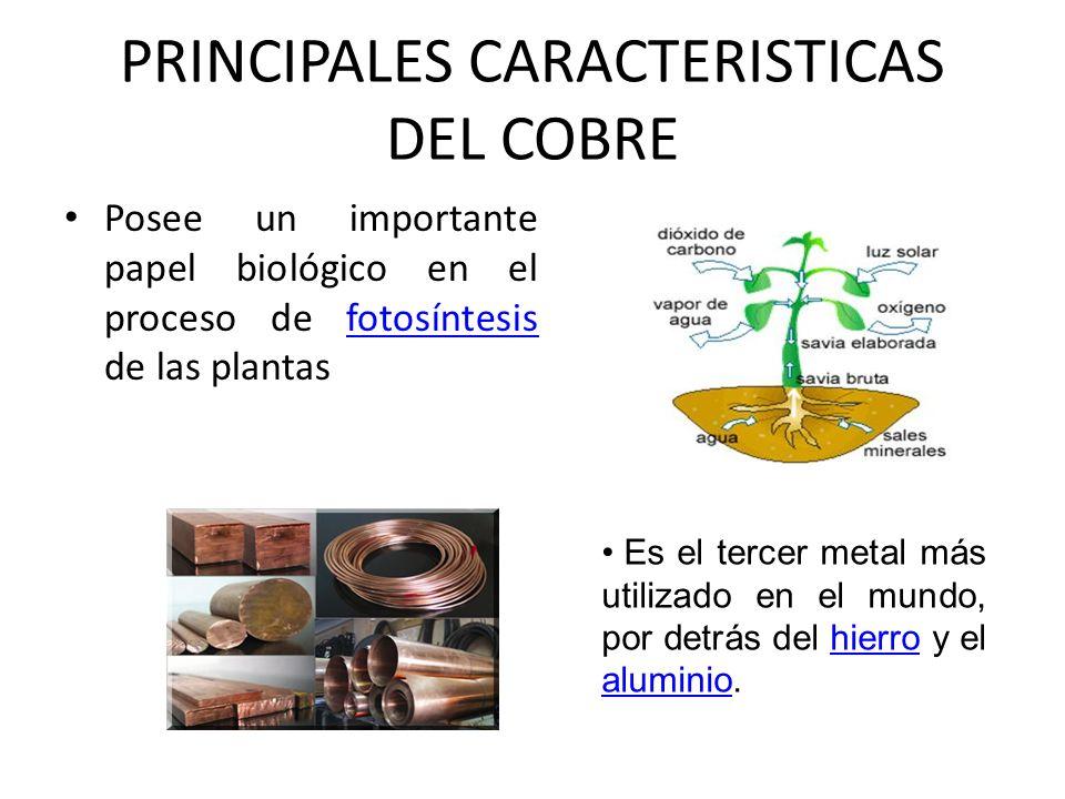Posee un importante papel biológico en el proceso de fotosíntesis de las plantas Es el tercer metal más utilizado en el mundo, por detrás del hierro y