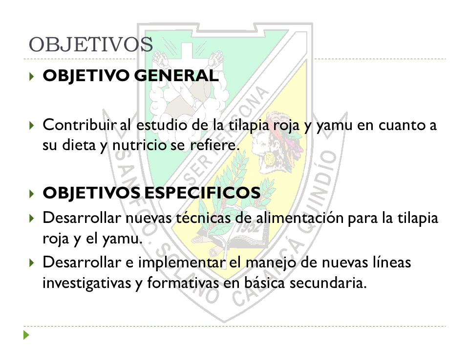 OBJETIVOS OBJETIVO GENERAL Contribuir al estudio de la tilapia roja y yamu en cuanto a su dieta y nutricio se refiere. OBJETIVOS ESPECIFICOS Desarroll