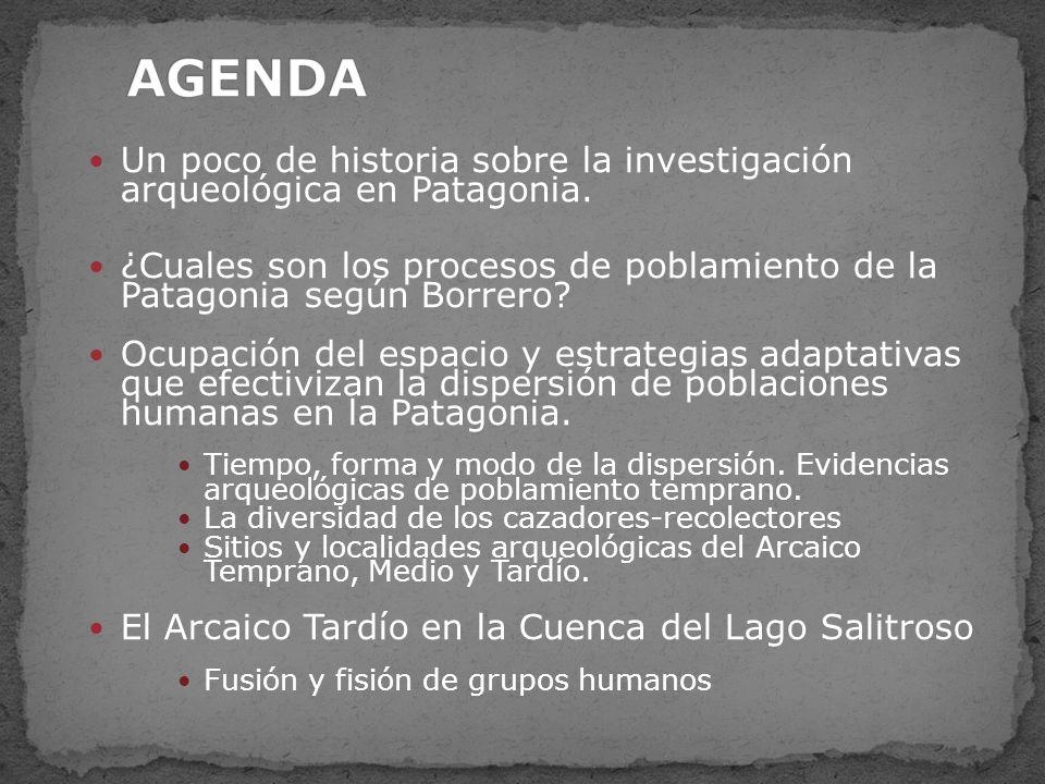 Colonización: tendría lugar una vez que se estabilizan las condiciones ambientales en gran parte de la Patagonia.