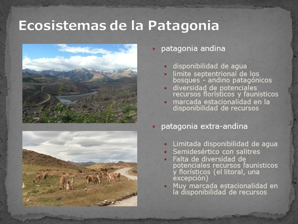 Fechados radiocarbónicos de la transición Pleistoceno- Holoceno en sitios arqueológicos de la Patagonia