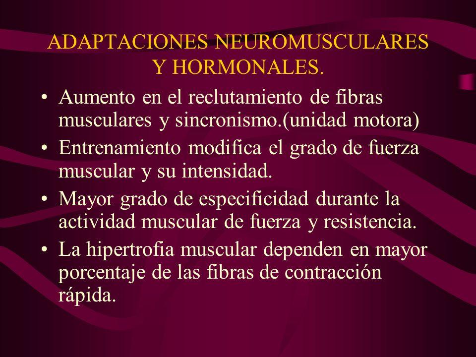 ADAPTACIONES NEUROMUSCULARES Y HORMONALES. Aumento en el reclutamiento de fibras musculares y sincronismo.(unidad motora) Entrenamiento modifica el gr