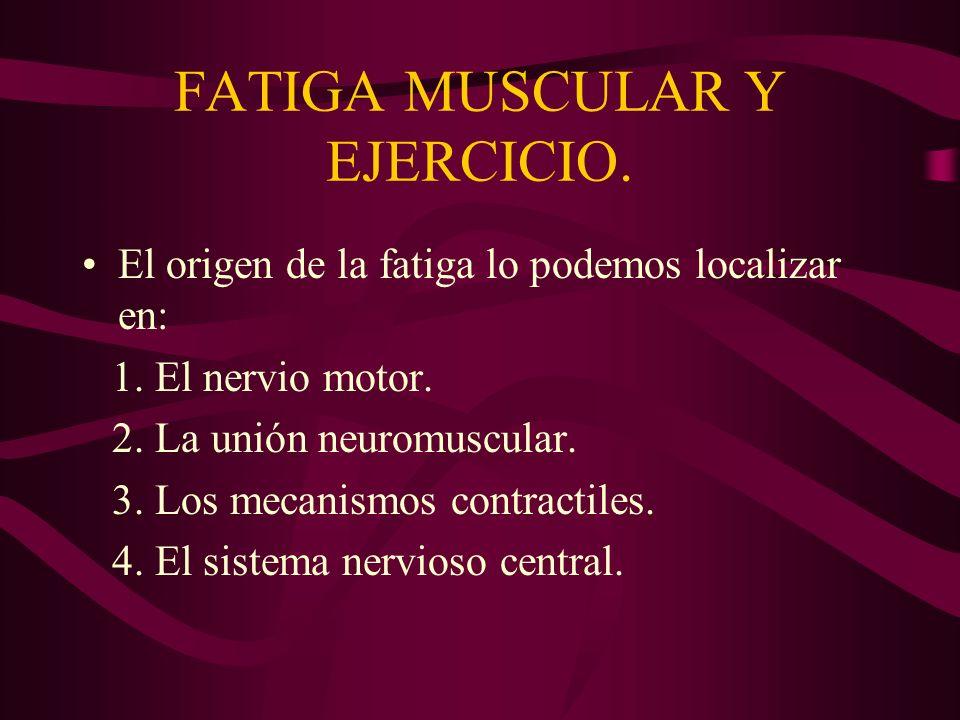 FATIGA MUSCULAR Y EJERCICIO. El origen de la fatiga lo podemos localizar en: 1.El nervio motor. 2.La unión neuromuscular. 3.Los mecanismos contractile