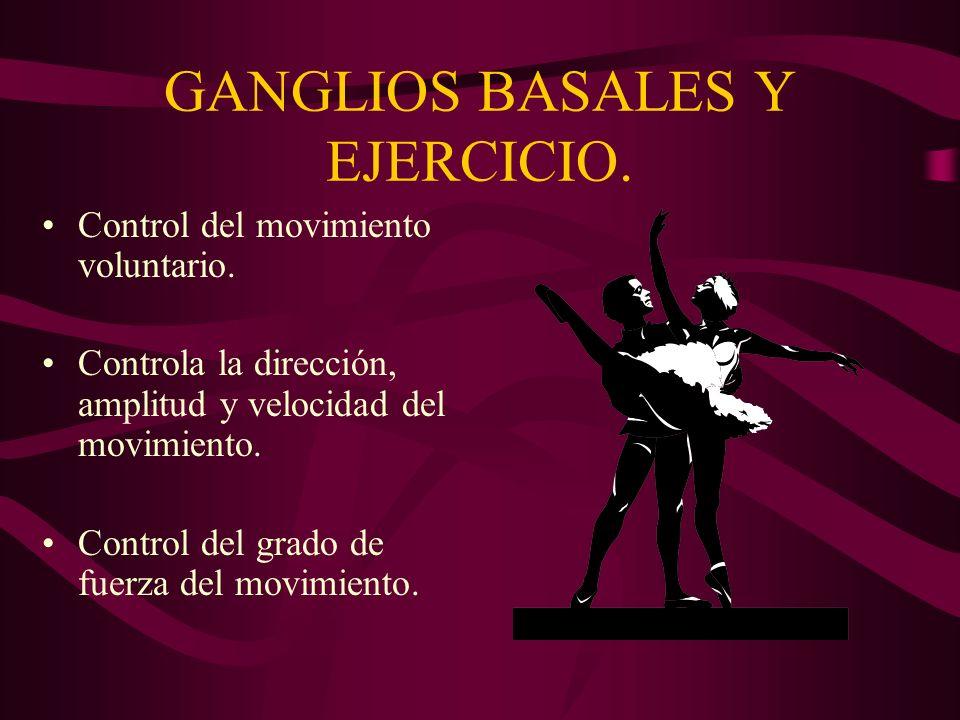 GANGLIOS BASALES Y EJERCICIO. Control del movimiento voluntario. Controla la dirección, amplitud y velocidad del movimiento. Control del grado de fuer