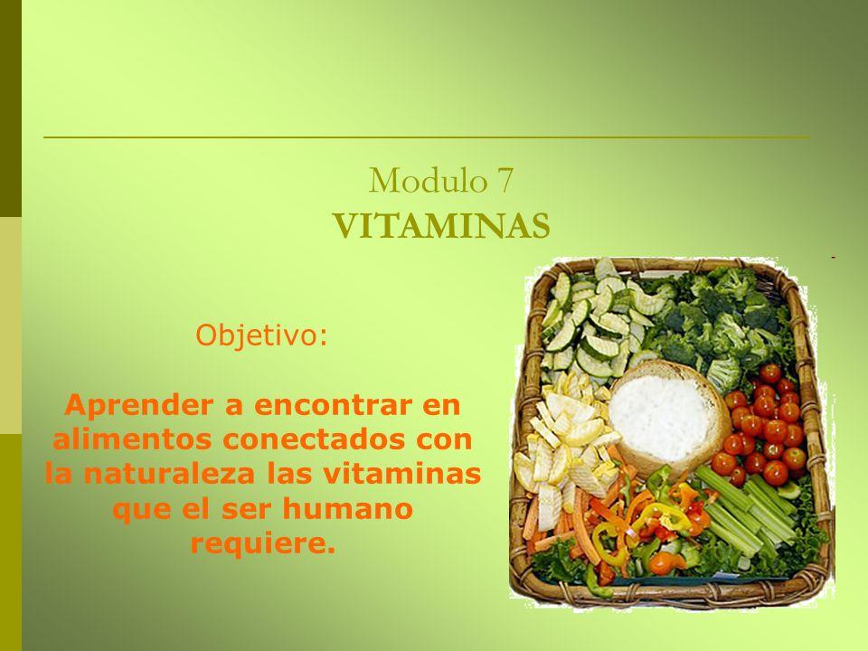 Modulo 7 VITAMINAS Objetivo: Aprender a encontrar en alimentos conectados con la naturaleza las vitaminas que el ser humano requiere.
