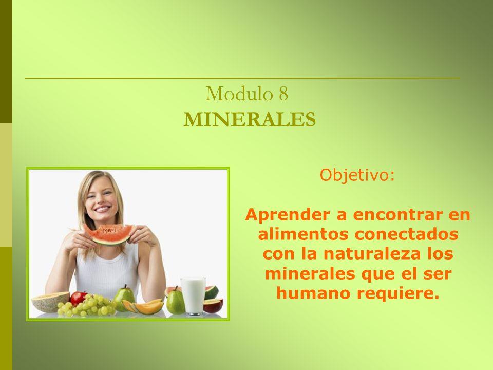 Modulo 8 MINERALES Objetivo: Aprender a encontrar en alimentos conectados con la naturaleza los minerales que el ser humano requiere.