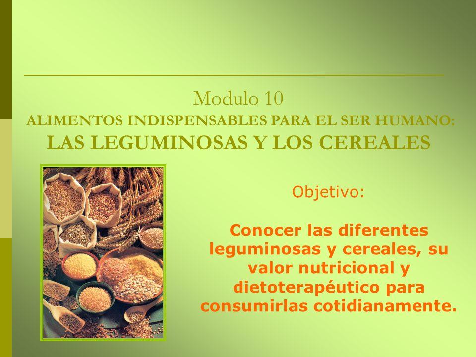Modulo 10 ALIMENTOS INDISPENSABLES PARA EL SER HUMANO: LAS LEGUMINOSAS Y LOS CEREALES Objetivo: Conocer las diferentes leguminosas y cereales, su valo