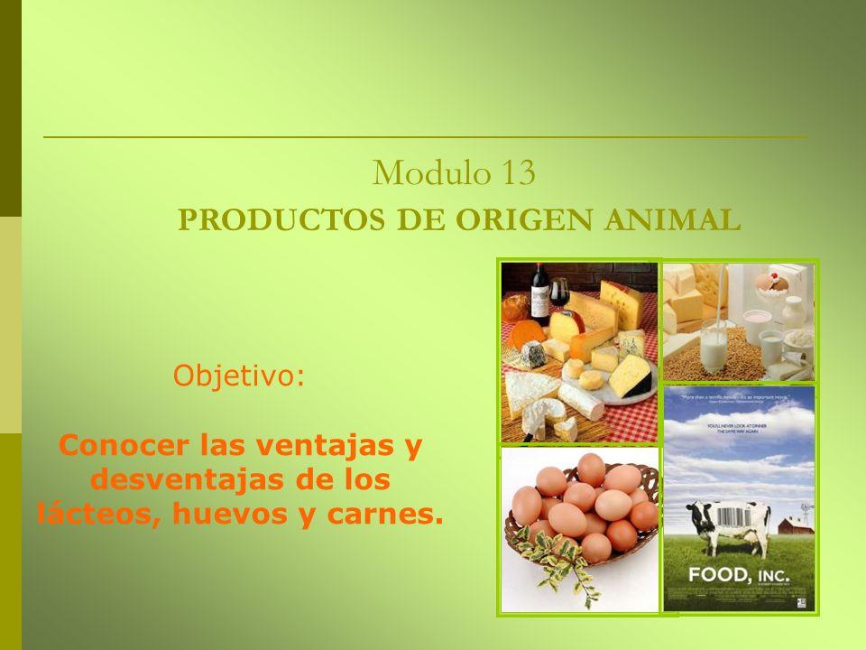 Modulo 13 PRODUCTOS DE ORIGEN ANIMAL Objetivo: Conocer las ventajas y desventajas de los lácteos, huevos y carnes.