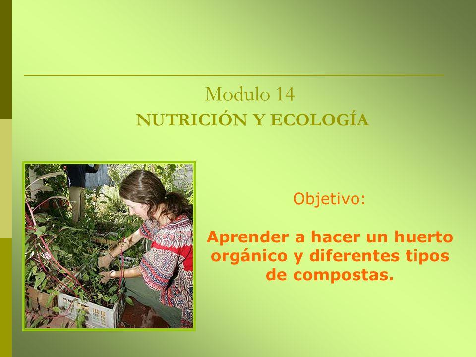 Modulo 14 NUTRICIÓN Y ECOLOGÍA Objetivo: Aprender a hacer un huerto orgánico y diferentes tipos de compostas.