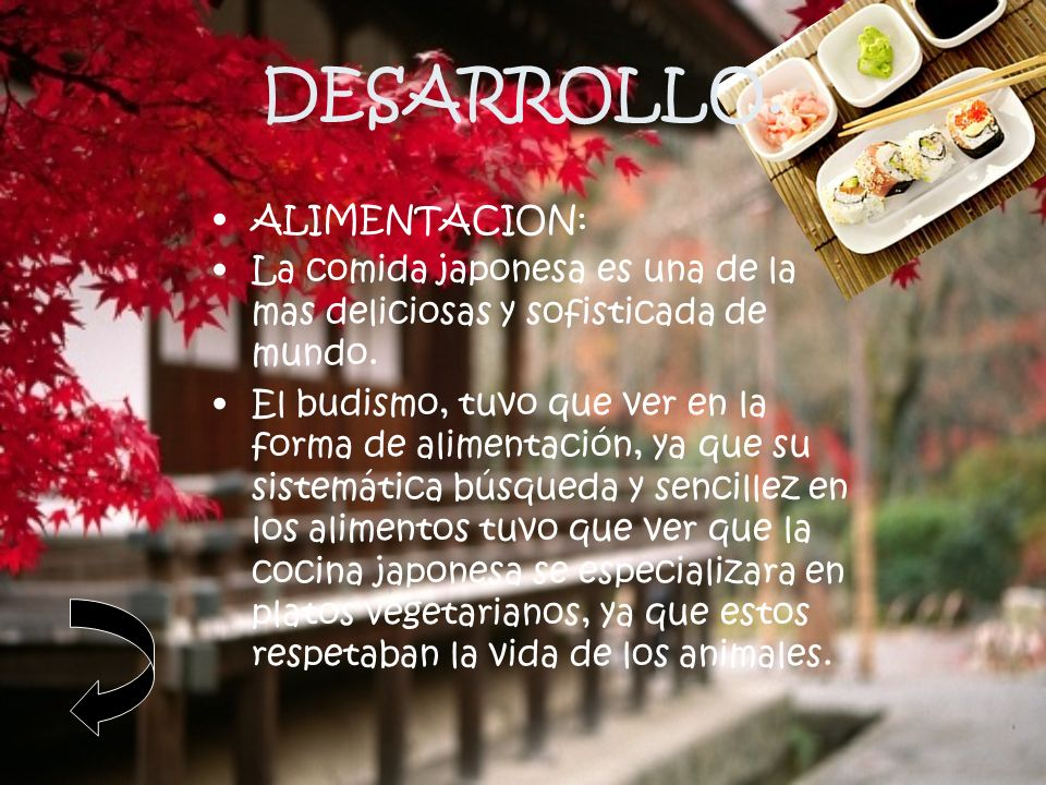 DESARROLLO. ALIMENTACION: La comida japonesa es una de la mas deliciosas y sofisticada de mundo. El budismo, tuvo que ver en la forma de alimentación,